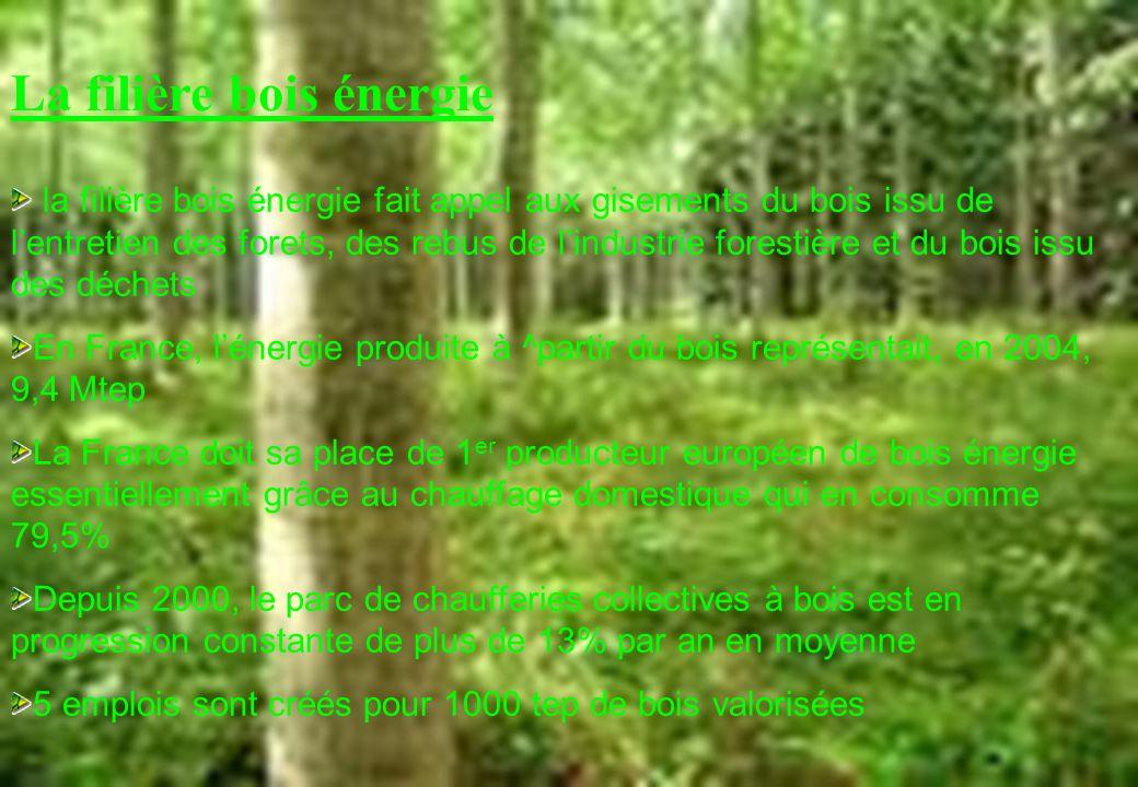 La filière bois énergie