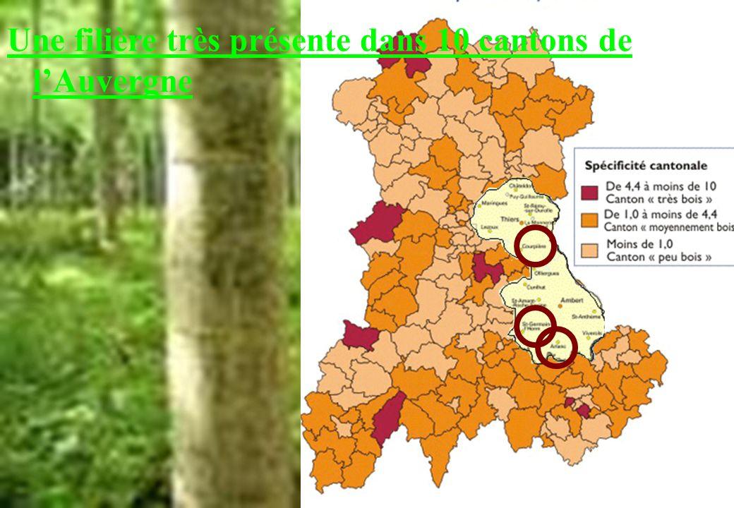 Une filière très présente dans 10 cantons de l'Auvergne