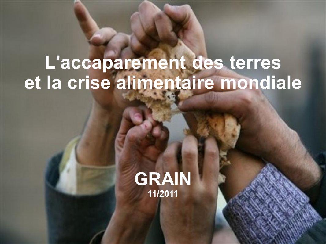 L accaparement des terres et la crise alimentaire mondiale