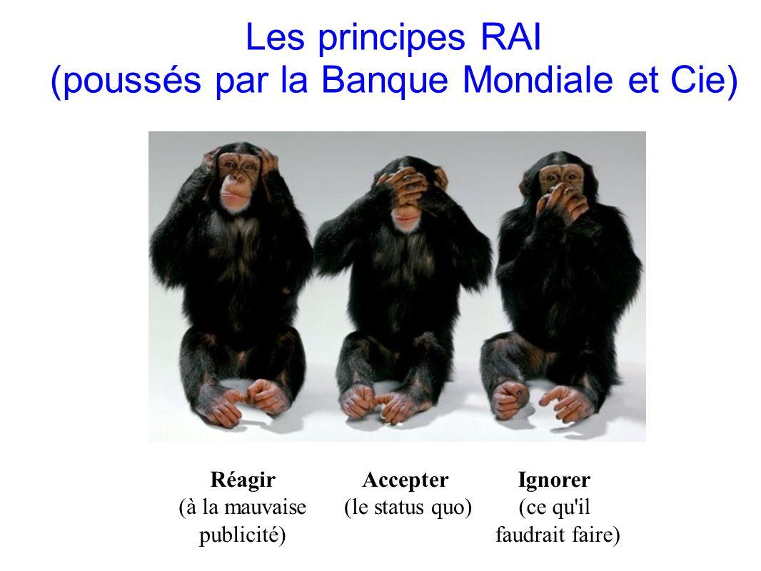 Les principes RAI (poussés par la Banque Mondiale et Cie)