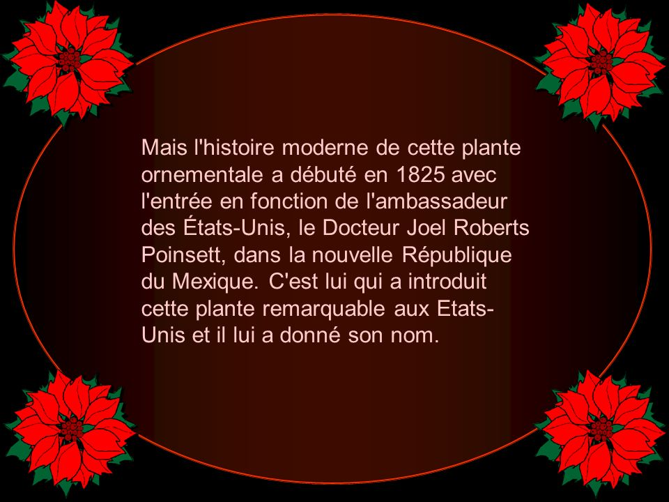 Mais l histoire moderne de cette plante ornementale a débuté en 1825 avec l entrée en fonction de l ambassadeur des États-Unis, le Docteur Joel Roberts Poinsett, dans la nouvelle République du Mexique.