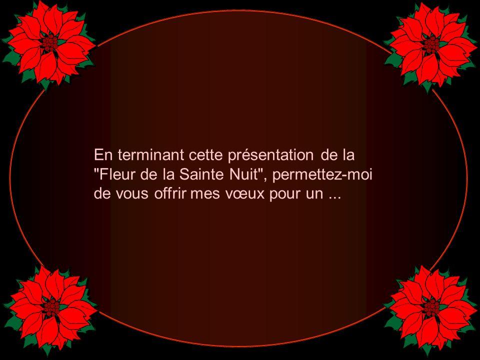 En terminant cette présentation de la Fleur de la Sainte Nuit , permettez-moi de vous offrir mes vœux pour un ...