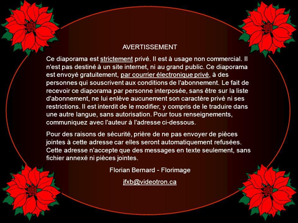 Florian Bernard - Florimage