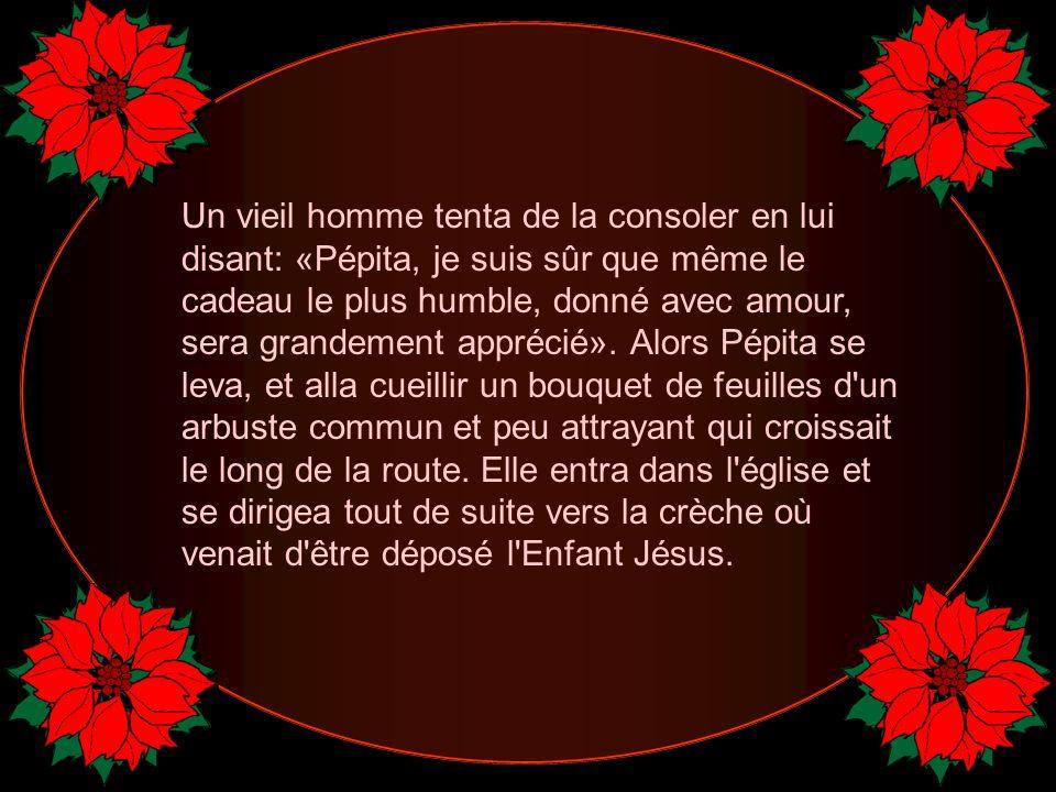 Un vieil homme tenta de la consoler en lui disant: «Pépita, je suis sûr que même le cadeau le plus humble, donné avec amour, sera grandement apprécié».
