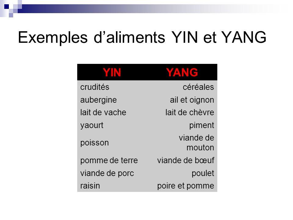 Exemples d'aliments YIN et YANG