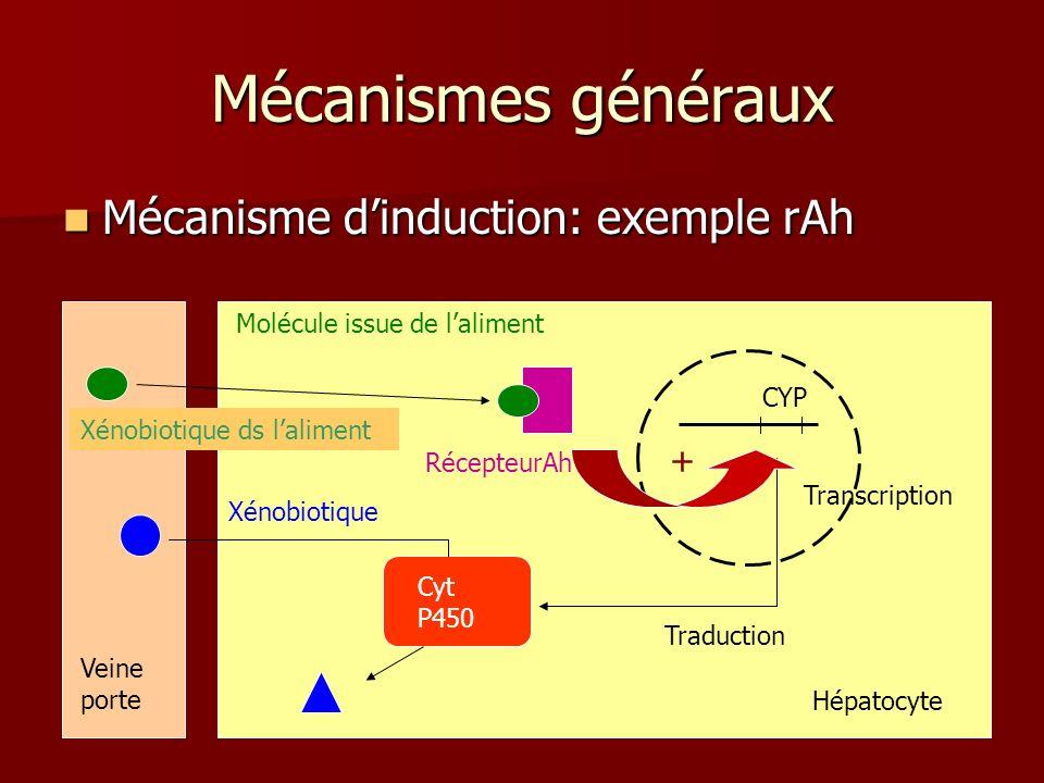 Mécanismes généraux Mécanisme d'induction: exemple rAh +