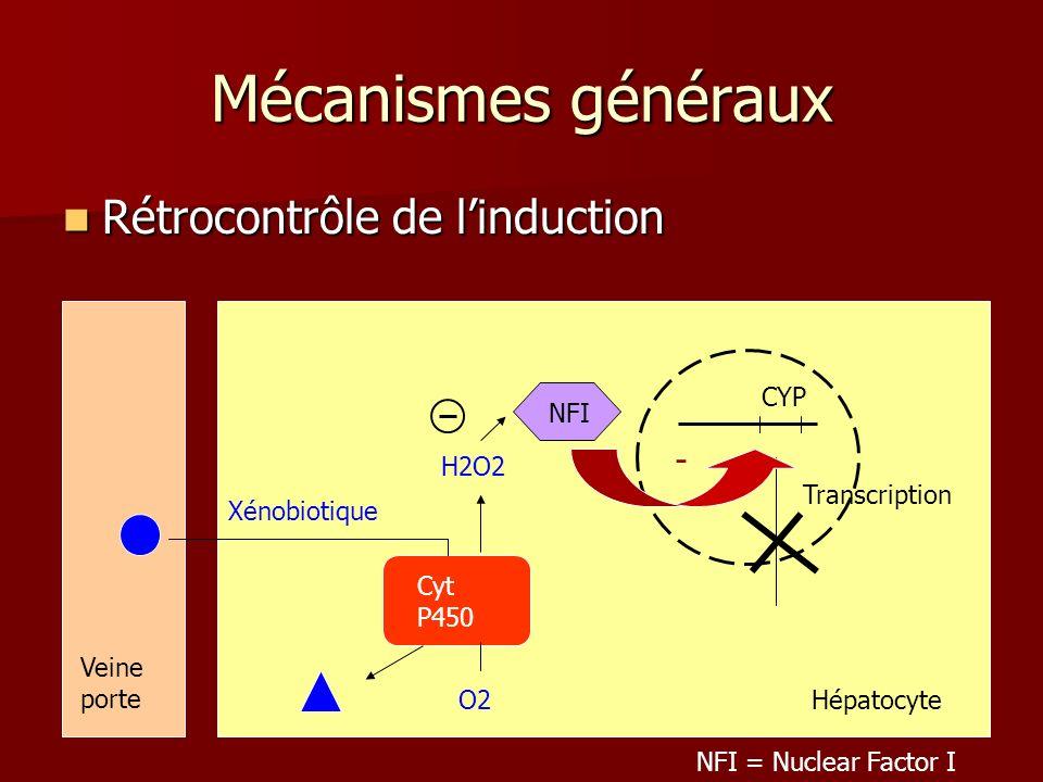 Mécanismes généraux Rétrocontrôle de l'induction - CYP NFI H2O2