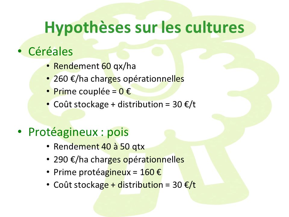 Hypothèses sur les cultures