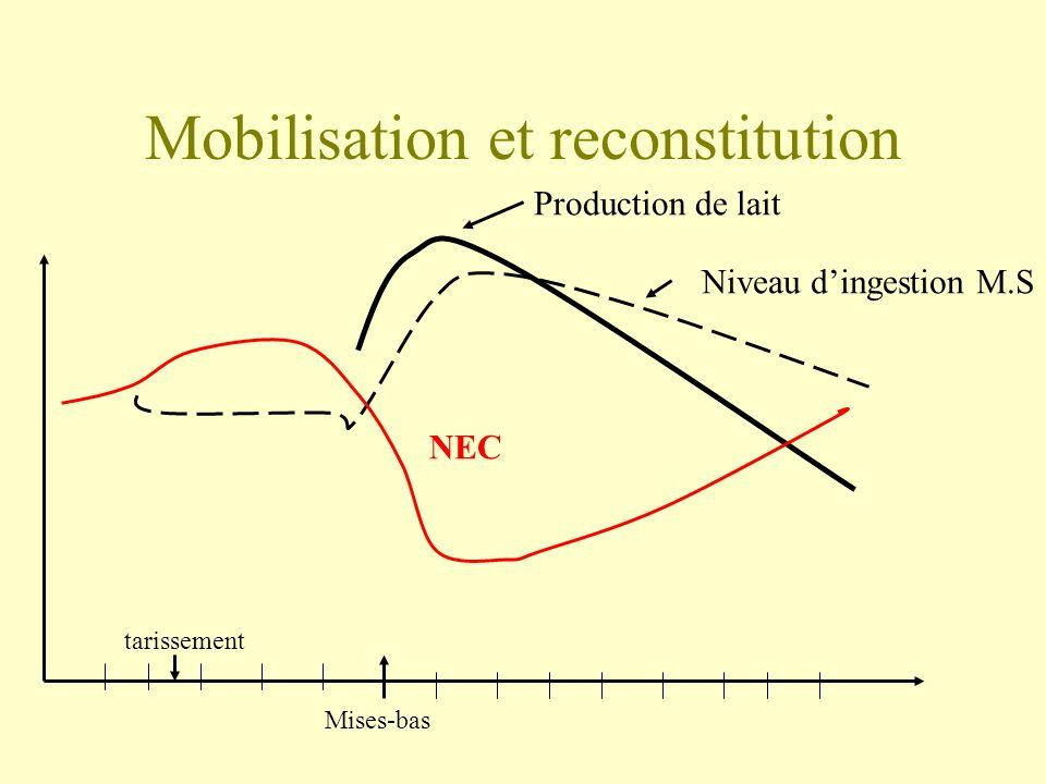 Mobilisation et reconstitution
