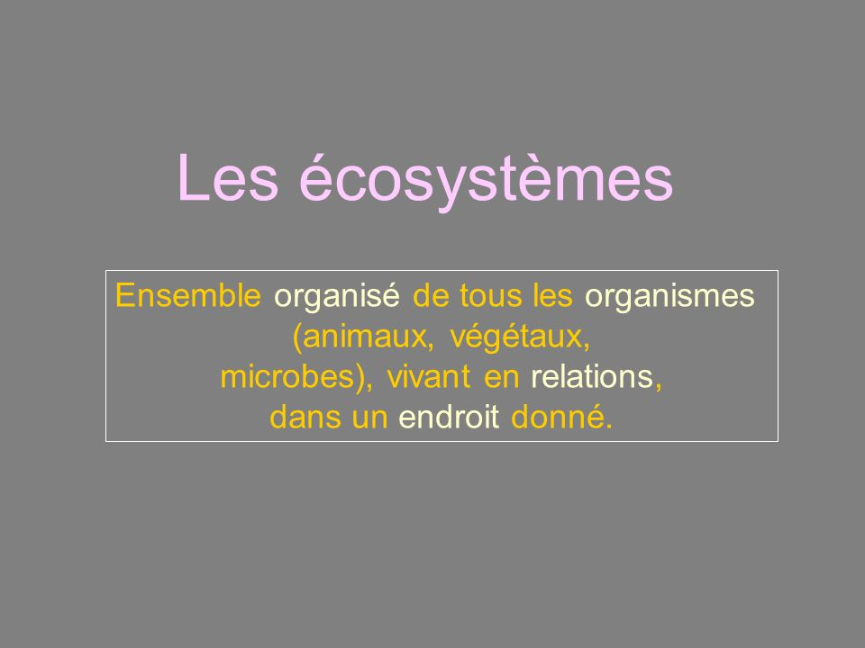 Les écosystèmes Ensemble organisé de tous les organismes