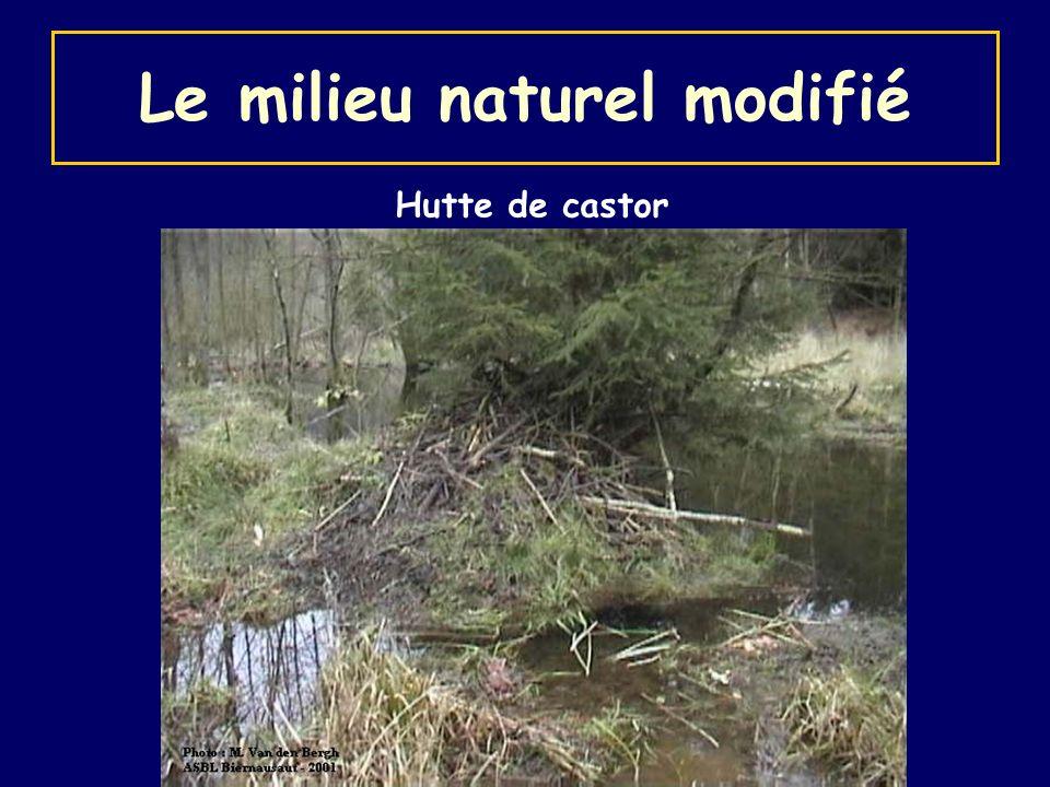 Le milieu naturel modifié
