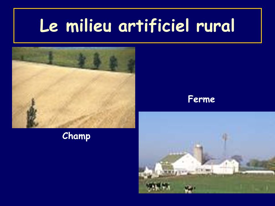 Le milieu artificiel rural