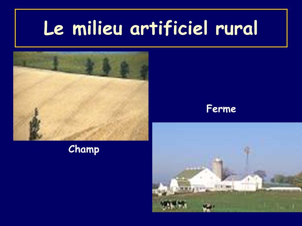 Le milieu artificiel rural