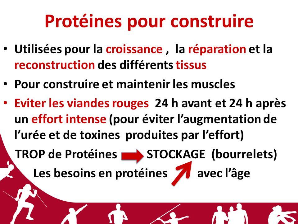 Protéines pour construire