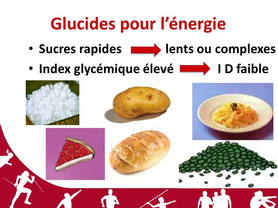 Glucides pour l'énergie