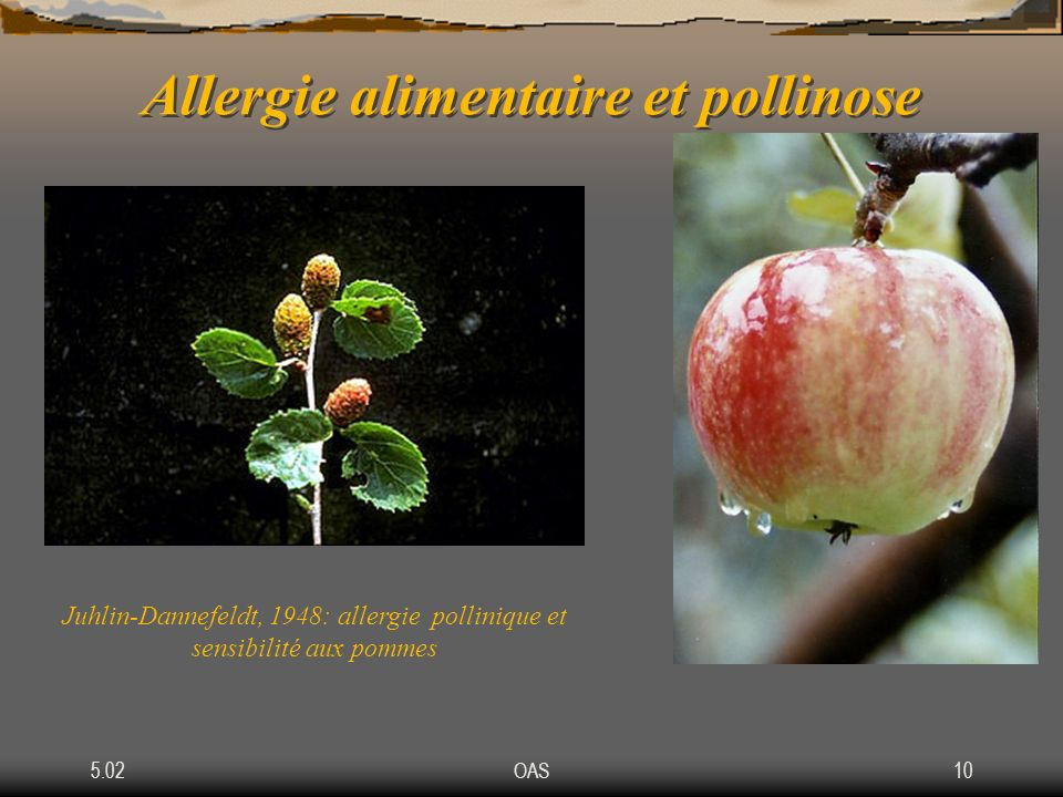 Allergie alimentaire et pollinose