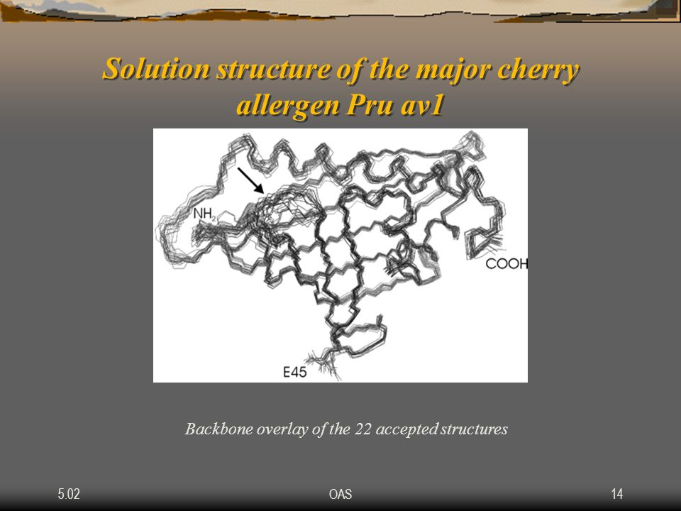 Solution structure of the major cherry allergen Pru av1