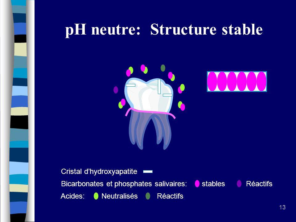 Environnement de la dent
