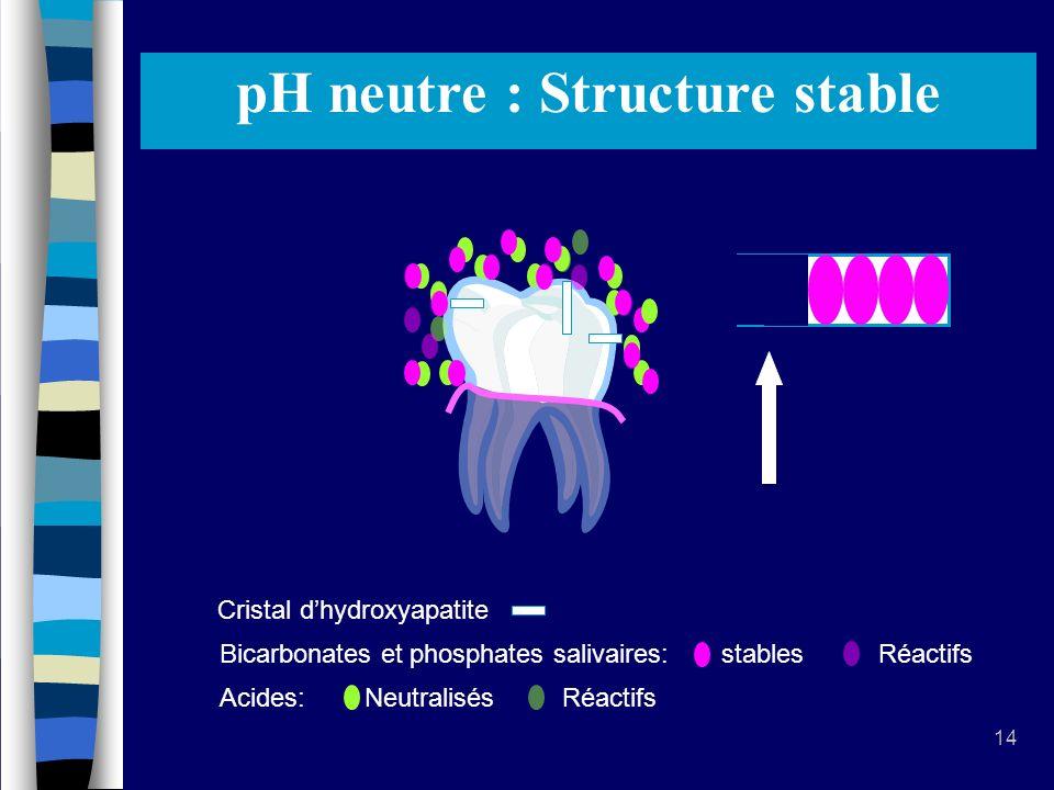 pH acide : Déminéralisation pH neutre : Structure stable