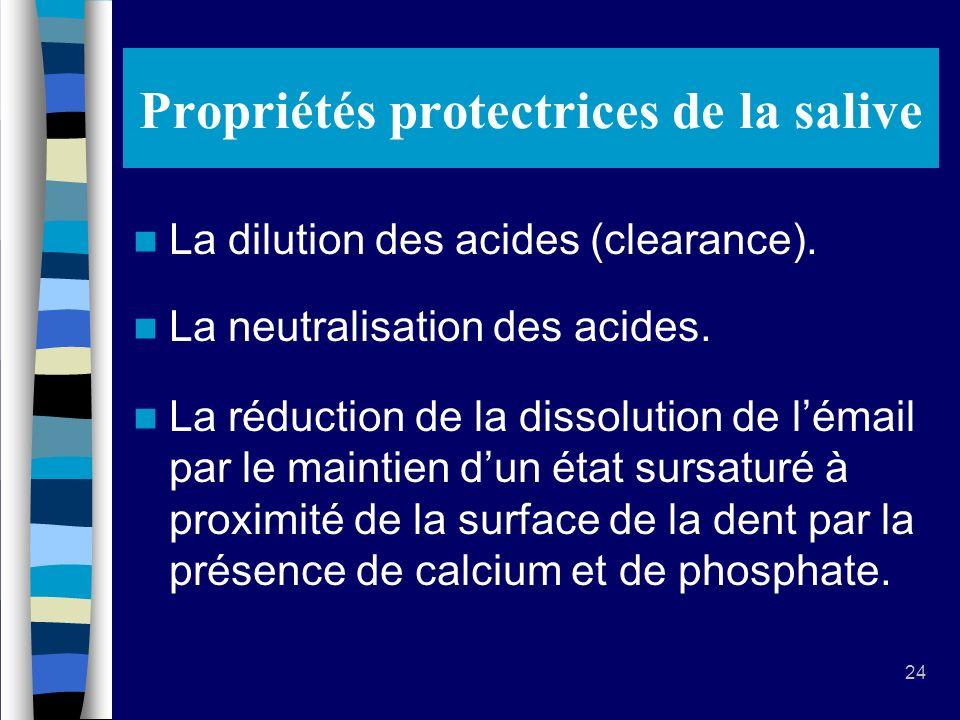 Propriétés protectrices de la salive