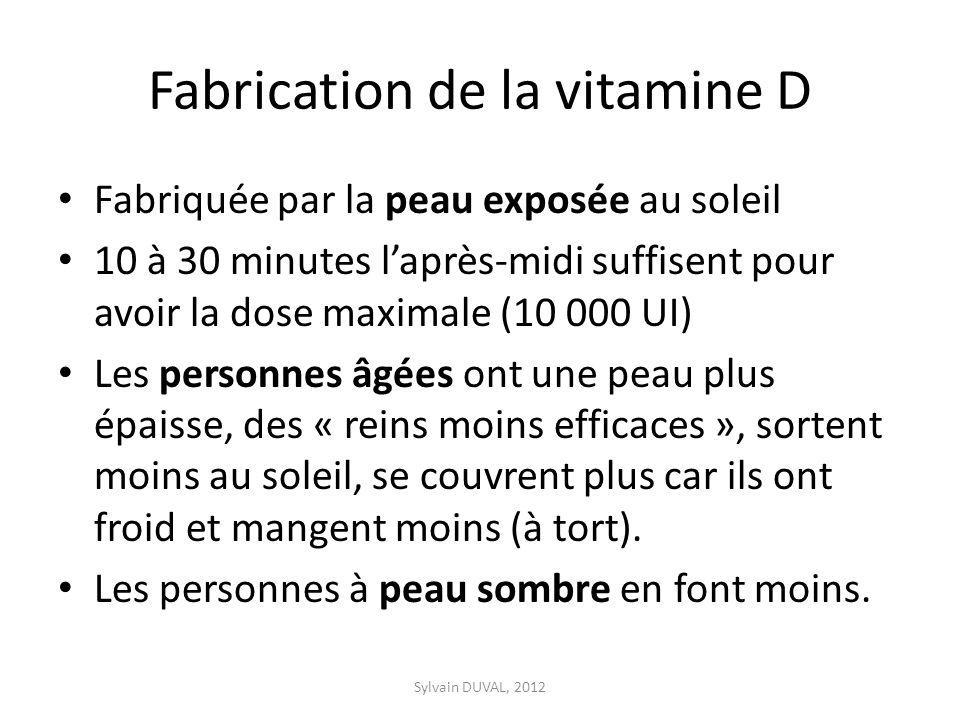 Fabrication de la vitamine D