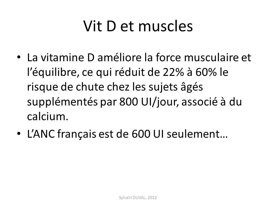 Vit D et muscles