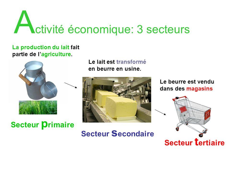 Activité économique: 3 secteurs