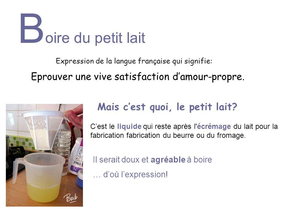 Expression de la langue française qui signifie: