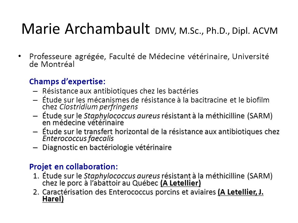 Marie Archambault DMV, M.Sc., Ph.D., Dipl. ACVM