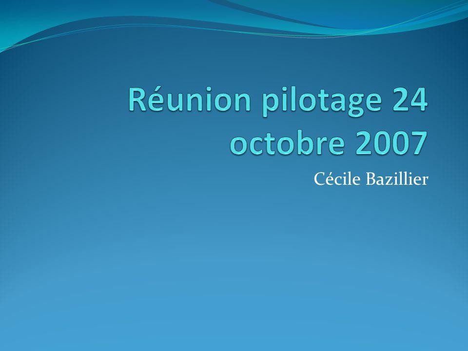 Réunion pilotage 24 octobre 2007