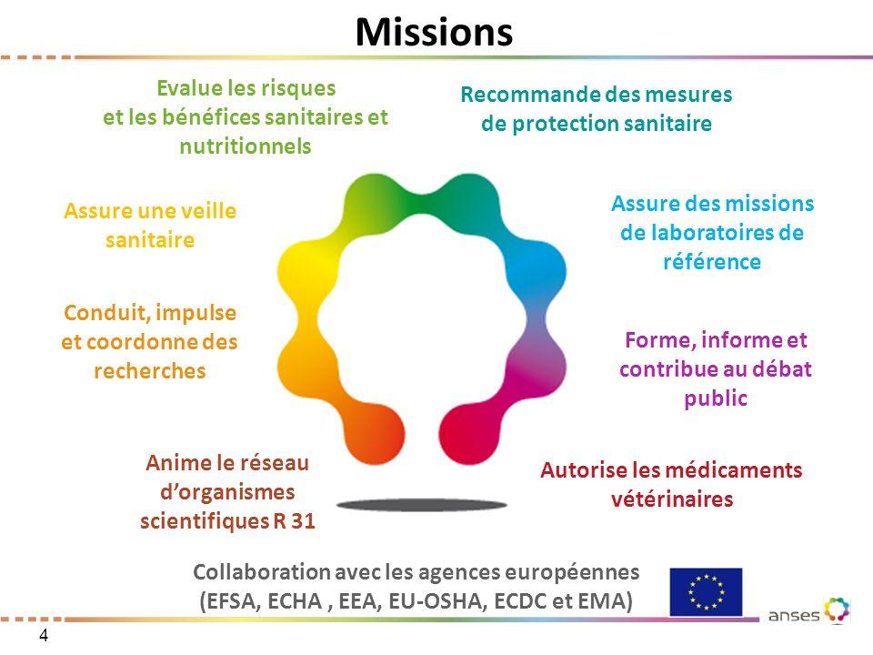 Missions Evalue les risques