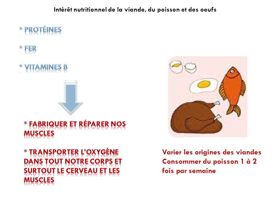 Intérêt nutritionnel de la viande, du poisson et des oeufs