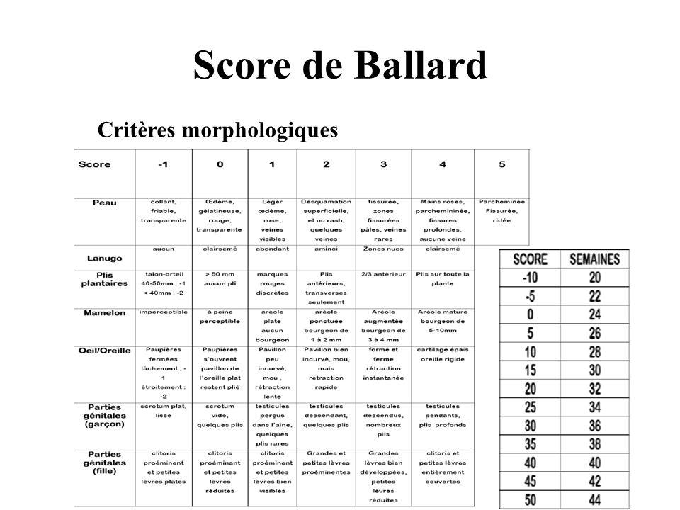 Score de Ballard Critères morphologiques