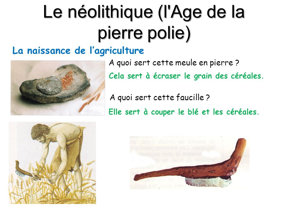 Le néolithique (l Age de la pierre polie)
