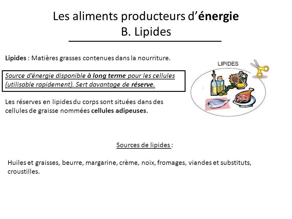 Les aliments producteurs d'énergie