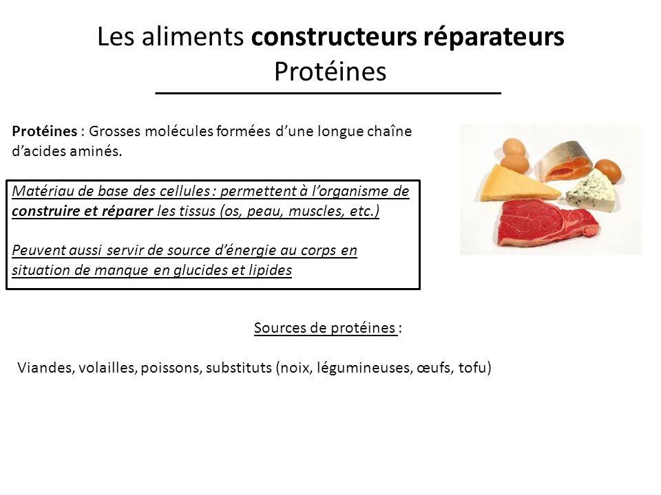 Les aliments constructeurs réparateurs