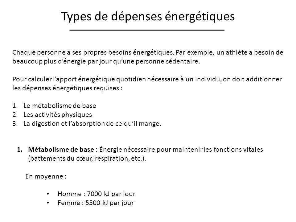 Types de dépenses énergétiques