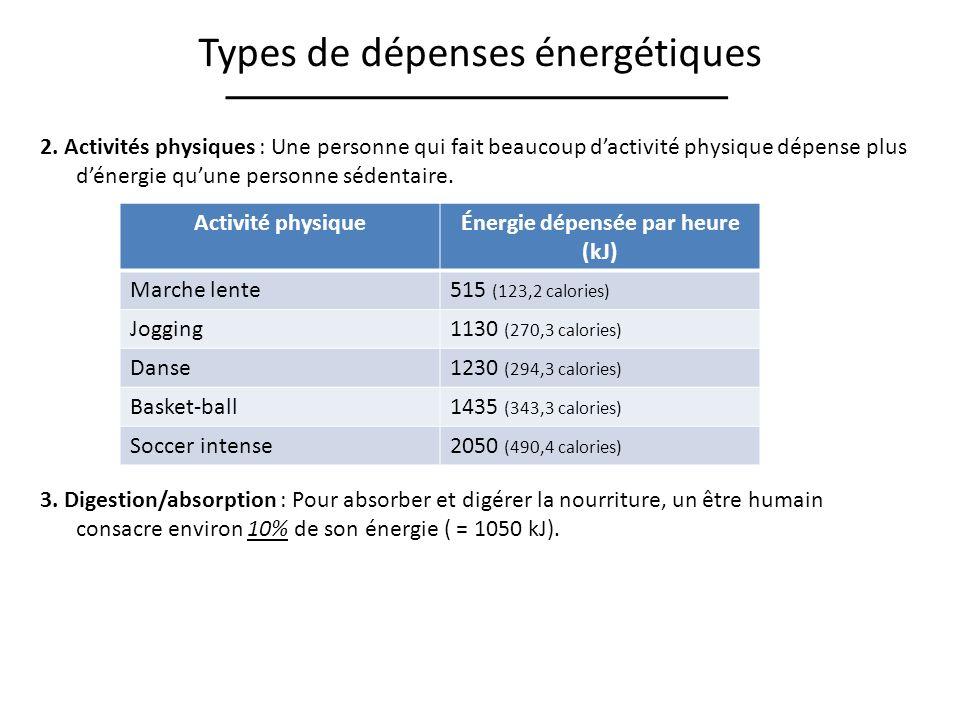 Énergie dépensée par heure (kJ)