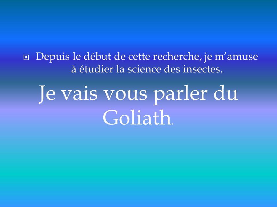 Je vais vous parler du Goliath.
