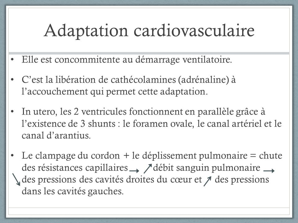 Adaptation cardiovasculaire