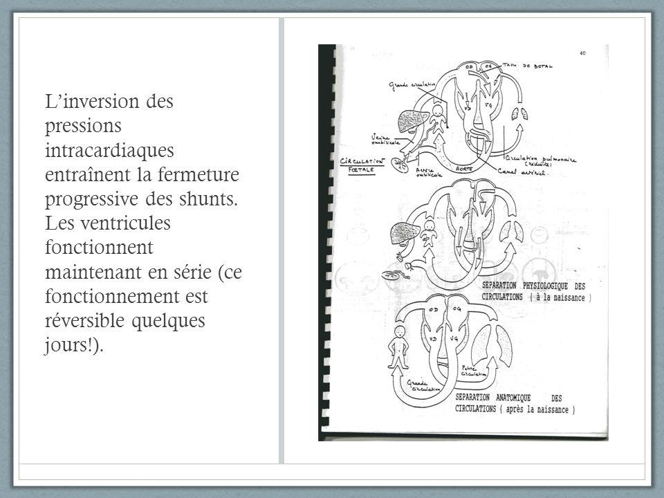 L'inversion des pressions intracardiaques entraînent la fermeture progressive des shunts.