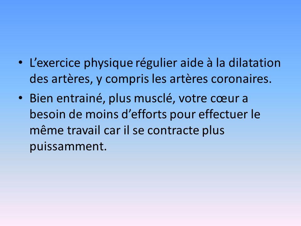 L'exercice physique régulier aide à la dilatation des artères, y compris les artères coronaires.