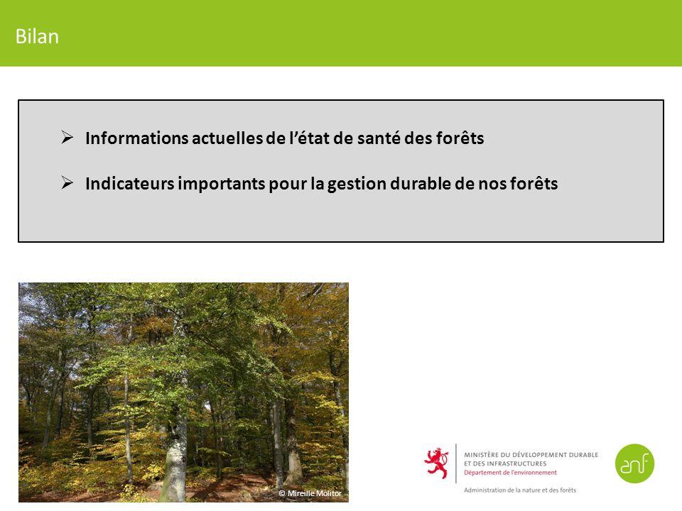Bilan Informations actuelles de l'état de santé des forêts