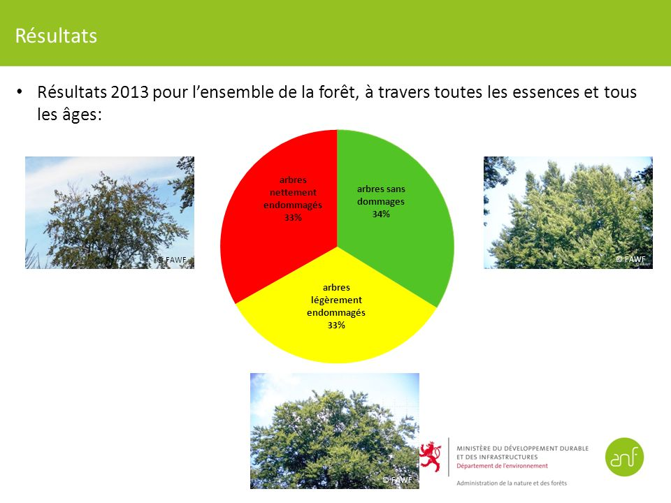 Résultats Résultats 2013 pour l'ensemble de la forêt, à travers toutes les essences et tous les âges: