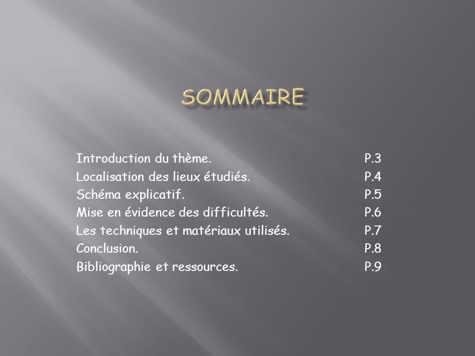 SOMMAIRE Introduction du thème. P.3