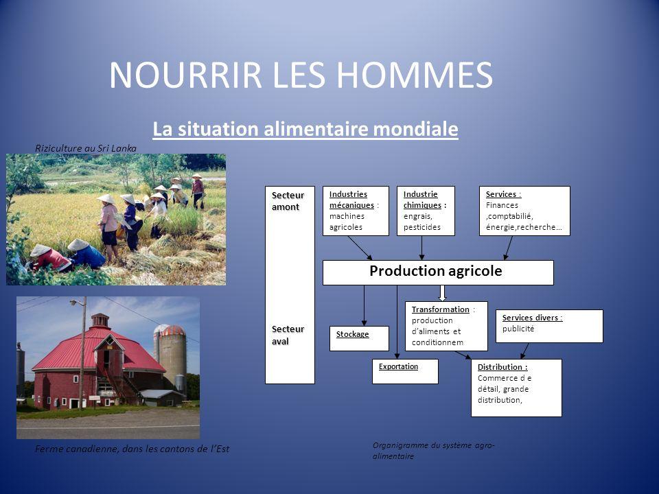 NOURRIR LES HOMMES La situation alimentaire mondiale