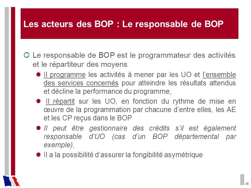 Les acteurs des BOP : Le responsable de BOP