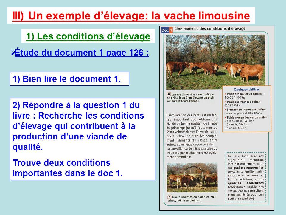 III) Un exemple d'élevage: la vache limousine