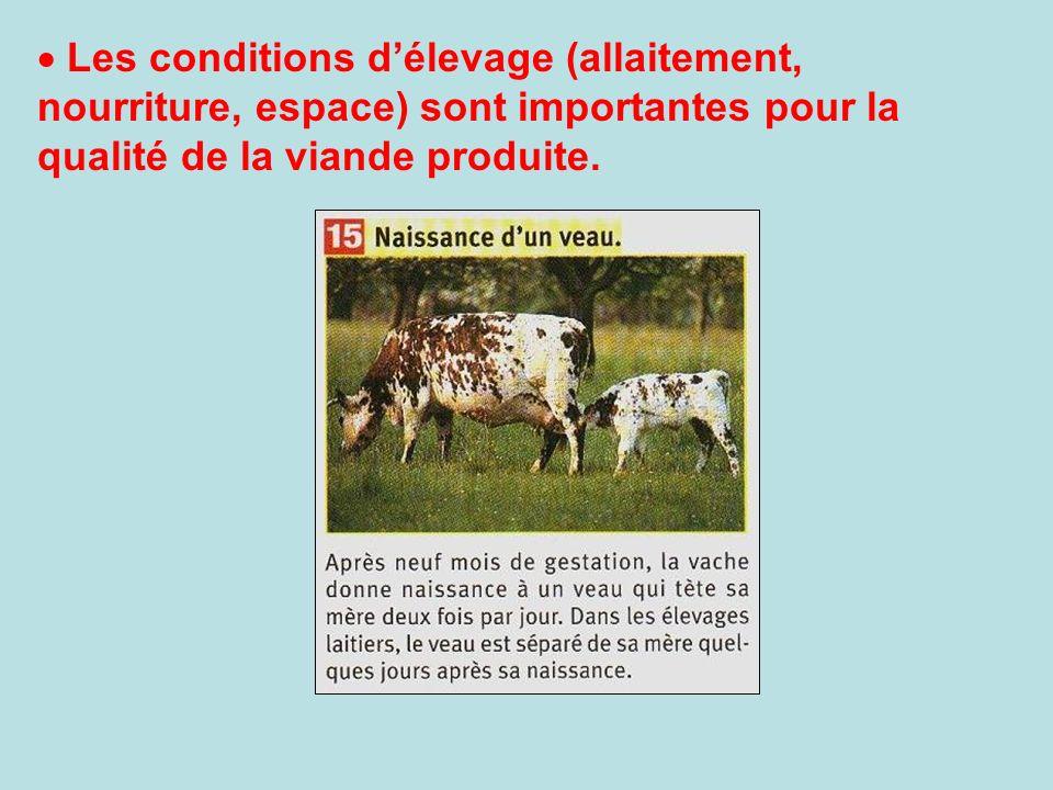 Les conditions d'élevage (allaitement, nourriture, espace) sont importantes pour la qualité de la viande produite.