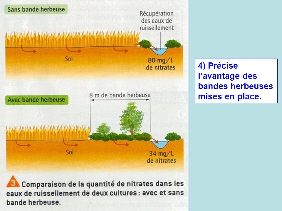 4) Précise l'avantage des bandes herbeuses mises en place.